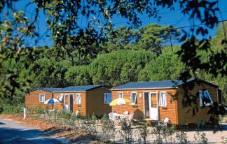Camping La Forêt de Janas