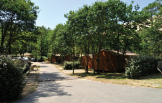 Domaine La Forêt